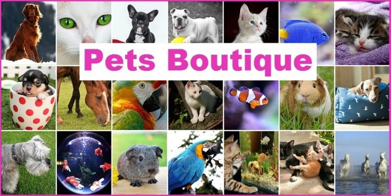 Pets Boutique Home Cover