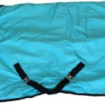Heavy Weight Horse Turnout Blanket 1200D Rip Stop Water Proof Turquoise 74
