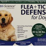 Enforcer 20 Ounce Flea Killer For Carpet Ocean Breeze